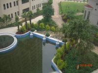 新罗西陂镇体育公园片区华鼎公馆3房出售