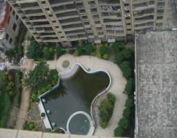 新罗西陂镇体育公园华鼎公馆3房出售