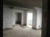 娄星新星路大汉巨龙家园房厅出售
