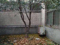 郾城区辽河路白庙社区独家小院房厅出售