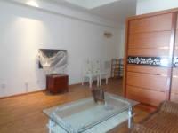 信州区滨江西路万达广场1房1厅中档装修出售