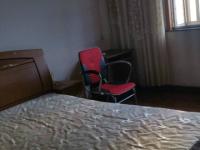 经区青岛中路青岛中路183号1房1厅简单装修出租