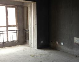 红旗新中大道松江帕提欧3房2厅毛坯出售