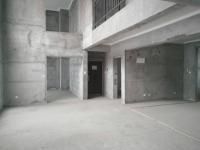 牧野平原路发展红星城市广场房厅出售
