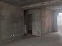 红旗新中大道深业世纪村房厅出售