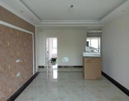 卫滨五一路立拓上海城房厅出售