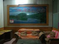 温县黄河路东段温县体育场附近房厅出租