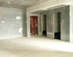 咸安滨河西街中央城房厅出售