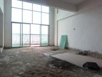 惠东县平山金河湾花园大复式5房3厅毛坯出售(可改名)