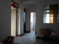 雨山区雨山路市政府隔壁双岗新村两室一厅出售