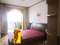 花山区新一城及采秣小学附近生化新村两室一厅中装出租