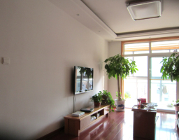 雨山区印山东路微山花园二期五室三厅两卫跃层中装出售