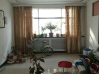 西峰张三巷安装公司家属楼3房2厅出租