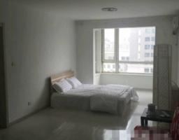 铁西区云峰街保利百合北园1房1厅高档装修出售