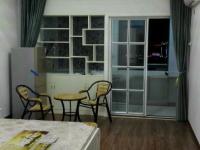 贵池湖光路远东国际花园1房1厅豪华装潢出租